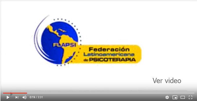 Video Flapsi